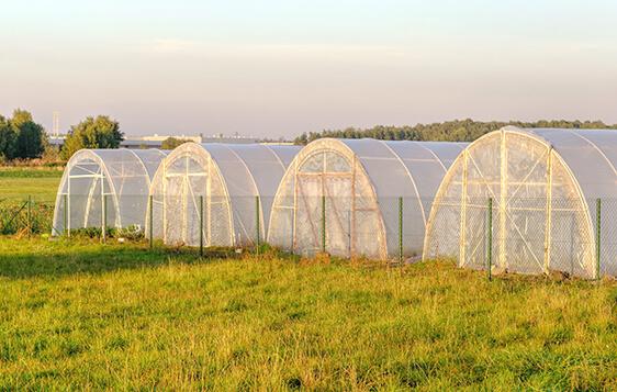 Extrusoras Para a Linha Agrícola - Lona Agrícola